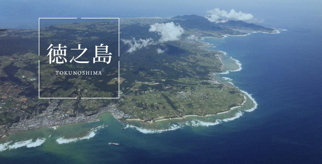 徳之島電気バス実証事業